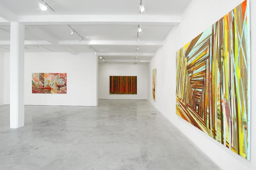 Streifzuege:  Paintings by David Schnell, installation view at Parasol unit, 2006.